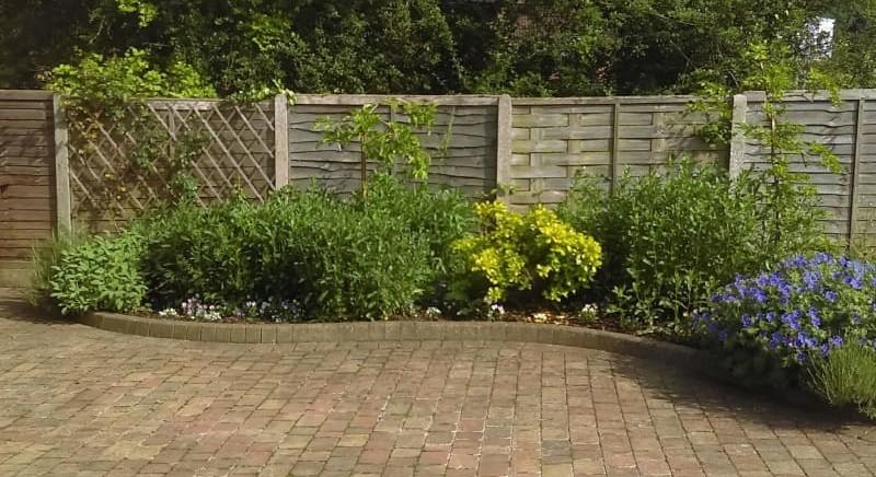 Garden Services St Albans